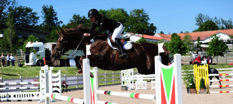 Mickso Equestrian